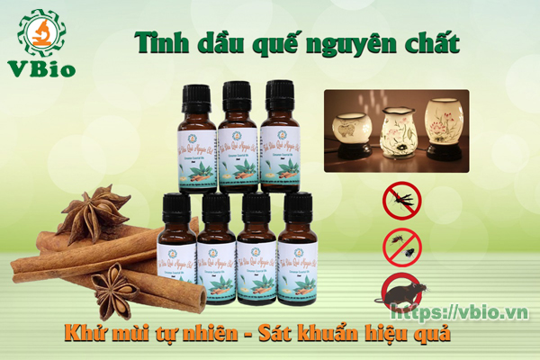 Tinh dầu quế nguyên chất