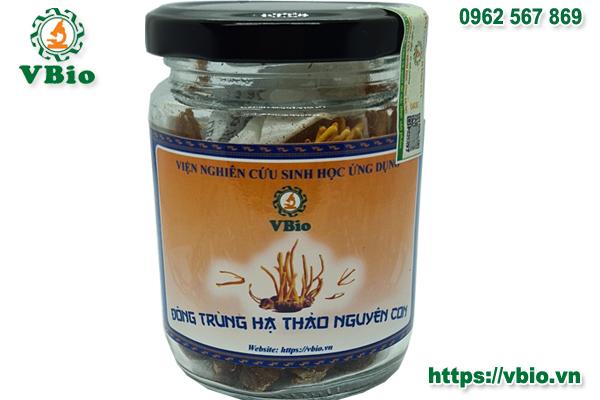 Đông trùng Hạ thảo nguyên con(sấy khô)