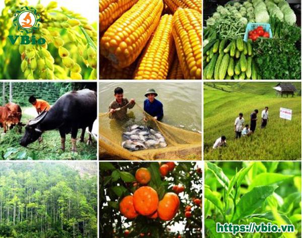Chế phẩm sinh học dùng để phòng trừ sâu bệnh gây hại cho cây trồng